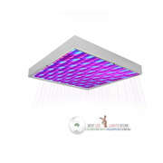 Cheap Price 14W LED Grow Lamp for Home Garden Plants Lighting