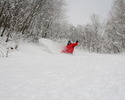 Hakuba Specials Deals and packages 2012- 2013