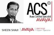 AVAYA Voice Specialist / Telecom Engineer - SEEKING JOB ASAP
