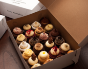 Buy Cupcakes Boxes Online In Melbourne