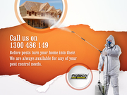 Protect Pest Control – Get Rid of Pest As Fast as Possible