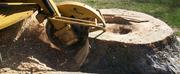 Stump Removals Melbourne