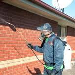 Pest Control Services in Roxburgh Park and Craigieburn