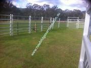 Cattle Panels Australia