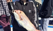 Professional Fishing Charters Melbourne - Reel Adventure Fishing