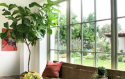 Inscape Indoor Plant-The Perfect Place For Indoor Plant Hire, Melbourne