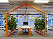 Hire the Best Quality Indoor Plants Providers In Melbourne - Inscape