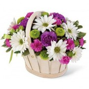 Are you Searching for fresh flowers in Malvern?