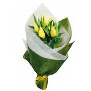 Best Online Florist in Toorak   Melbourne Fresh Flowers