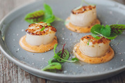 Seared Canadian Scallop Recipes