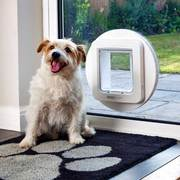Pet Door Installation in Melbourne