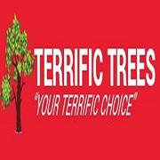 Terrific Trees