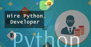 Hire Dedicated Python Developer   Experts   Programmer