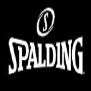 Spalding New Zealand